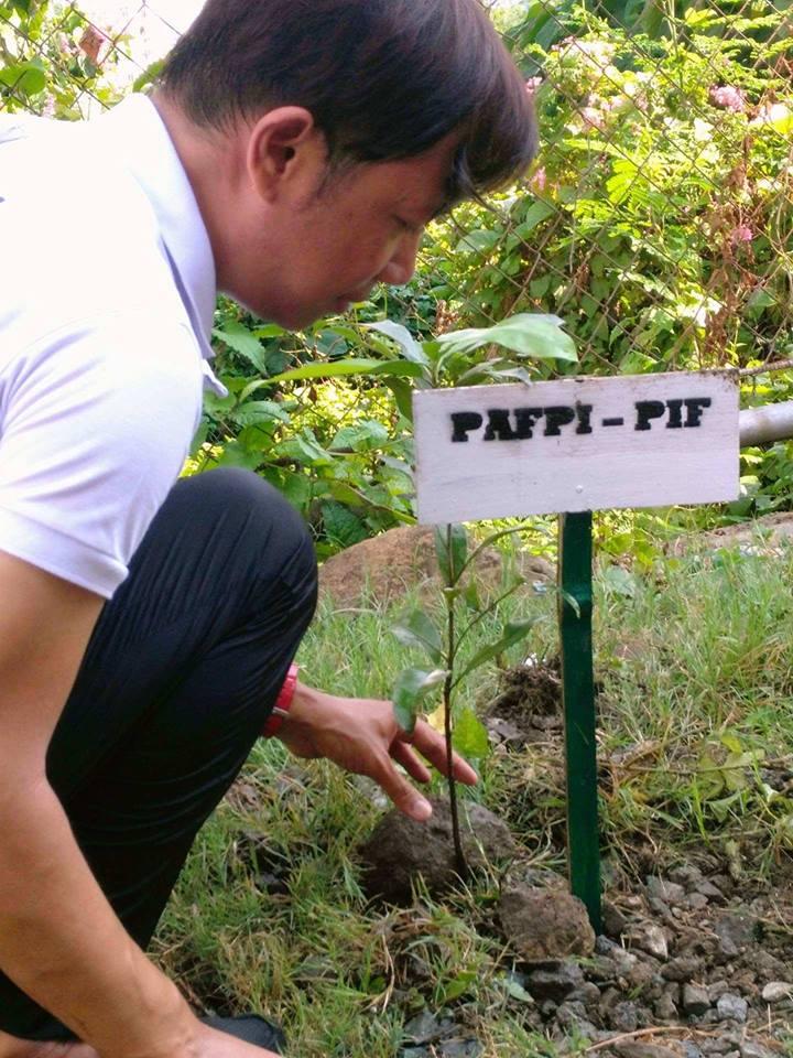 tree_planting5